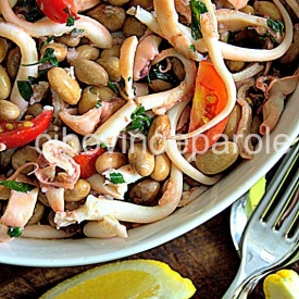 Insalata di moscardini e fagioli-Musky octopus and beans salad